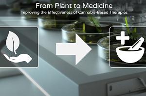 Plant to Medicine LinkedIn
